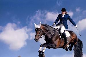 Смотреть секс в конном спорте, минет женщин фото